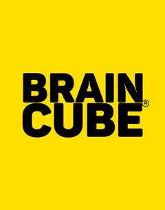 Braincube - Big Data